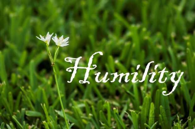 humility grass and flower