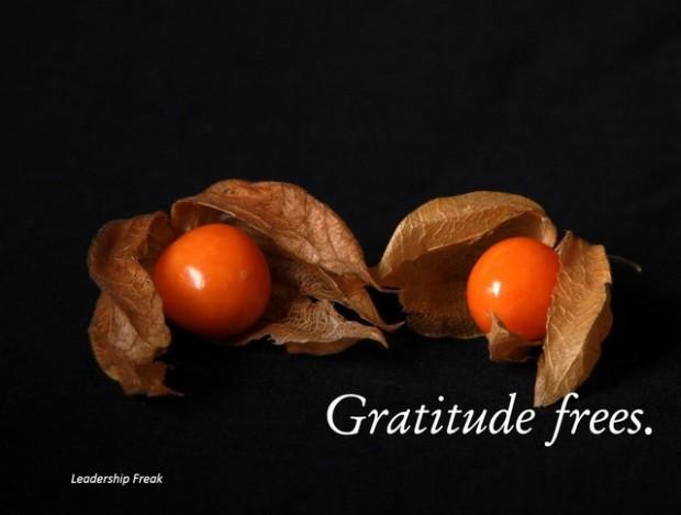 gratitude frees
