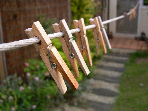 cloths pin - close line