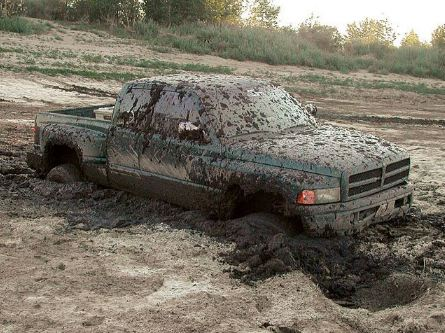 stuck-in-the-mud