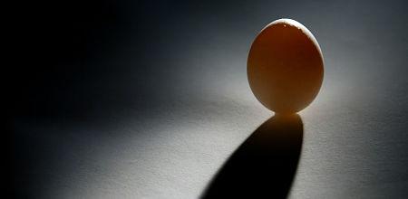 solo egg