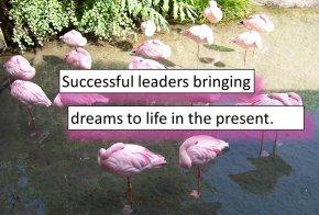 sleeping flamingos