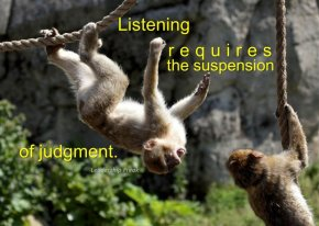 suspended monkeys