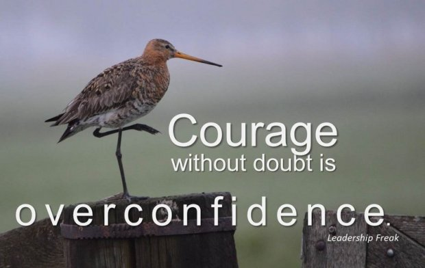 courage and doubt-001