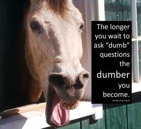 Talking horse