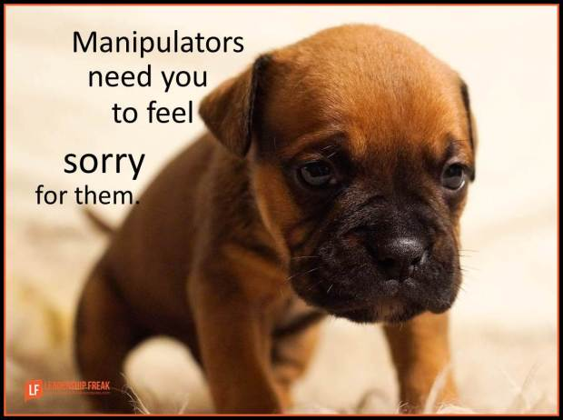 manipulators need you to feel sorry for them