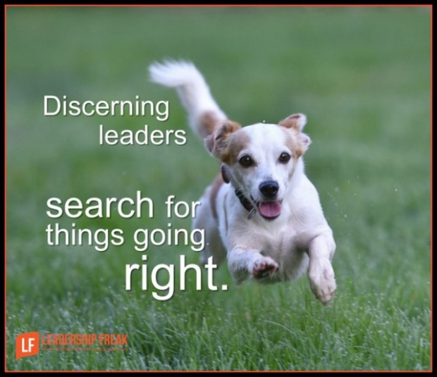 discerning leaders search for excellence-001