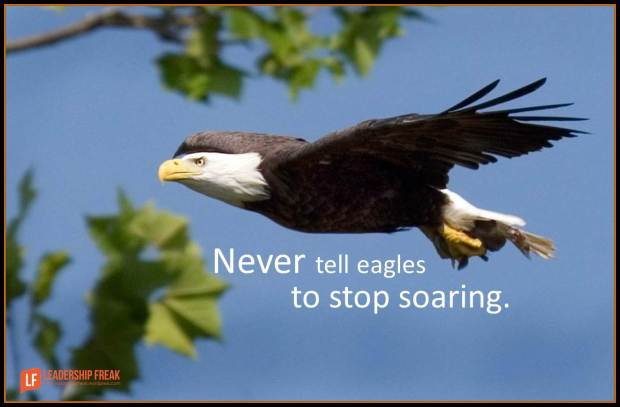 never tell eagles to stop soaring