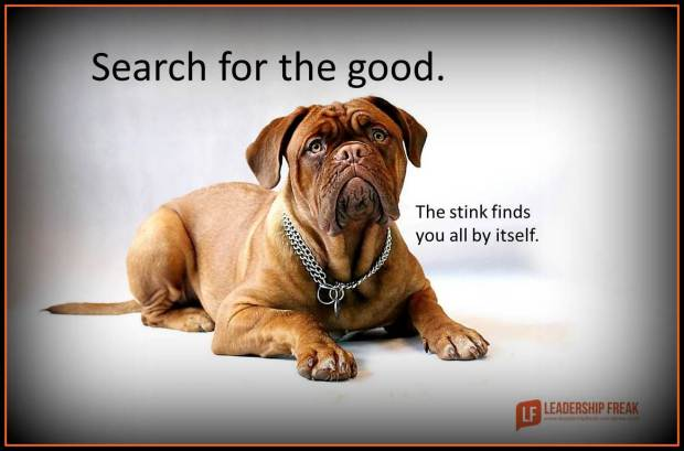 search for the good the stink finds you all by itself