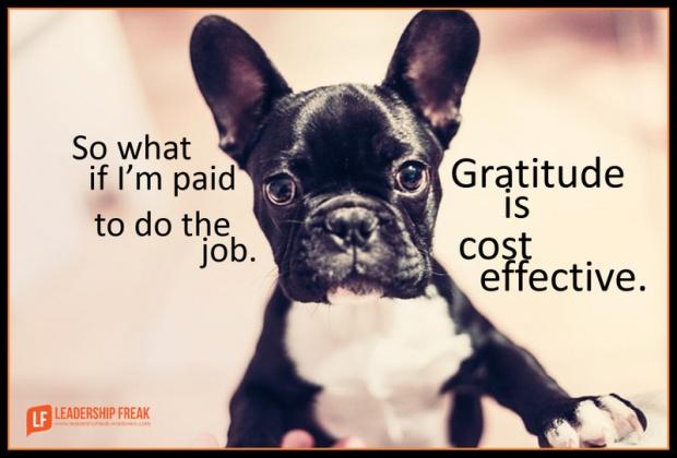 gratitude is cost effective.png-001