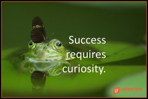 success requires curiosity-001