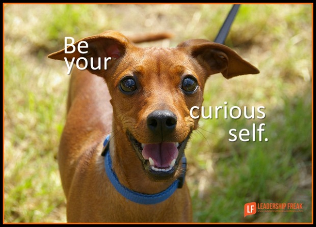 be your curious self.png-001