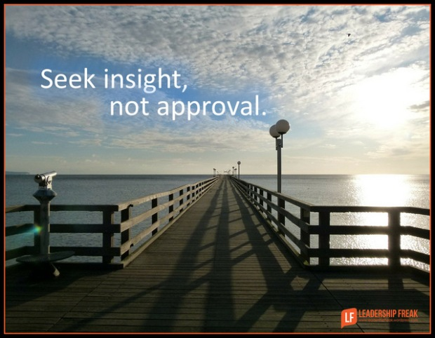 seek insight not approval.png