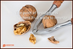 the point of resistance is where fruit waits to emerge.png
