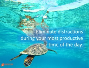 eliminate distractions during your most productive time of the day.png
