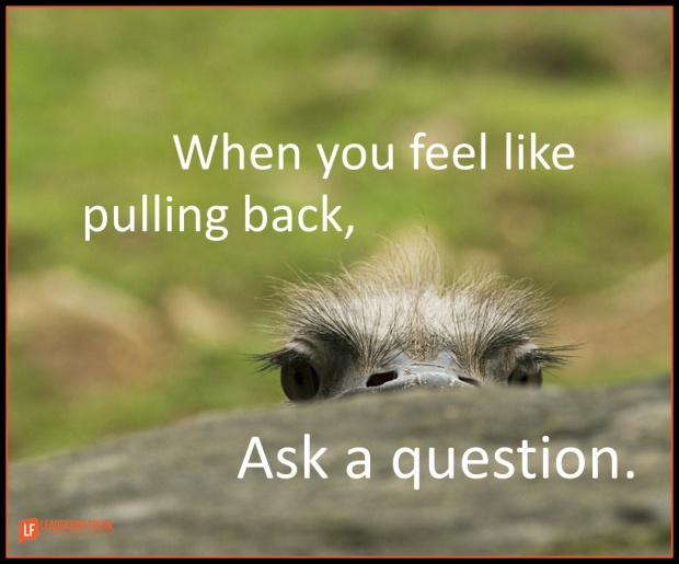 when you feel like pulling back ask a question.png