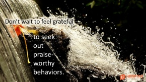 don't wait to feel grateful to seek out praise worthy behaivors.png