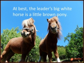 at best the leader's big white horse is a little brown pony.png