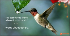 the best way to worry about yourself is to worry about others.png