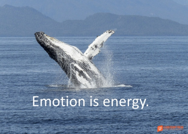 emotion is energy.png