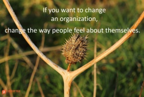 if you want to change an organization change the way people feel about themselves.png
