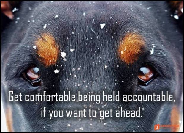 get comfortable being held accountable if you want to get ahead