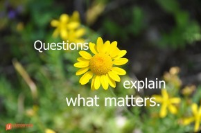 questions explain what matters
