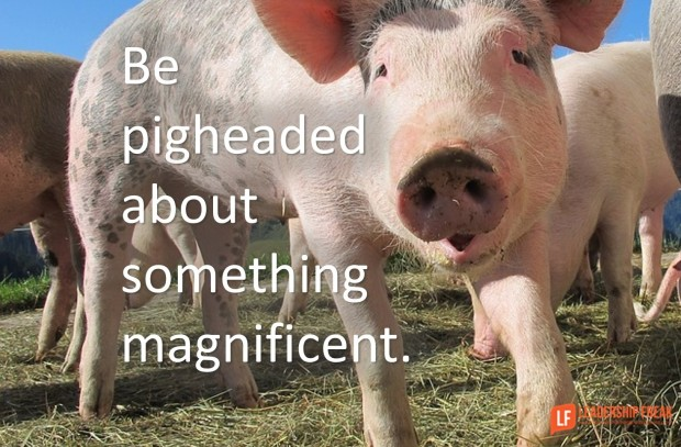 be pigheaded about something magnificent