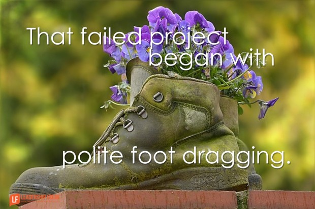 that failed project began with polite foot dragging
