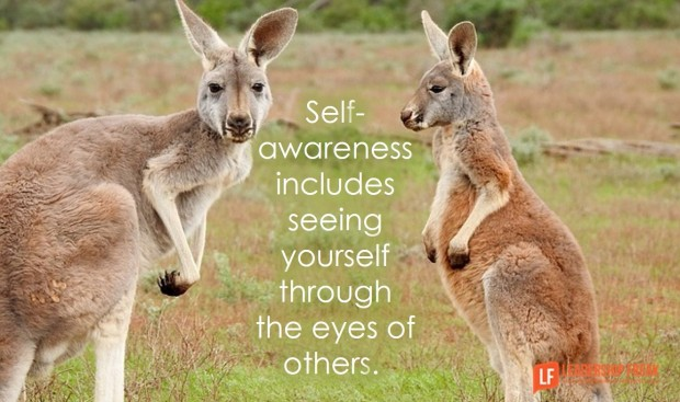 self-awareness includes seeing yourself through the eyes of others