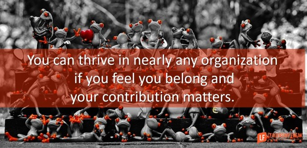 you can thrive in nearly any organization if you feel you belong and your contribution matters