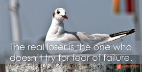 the-real-loser-is-the-one-who-doesnt-try-for-fear-of-failure