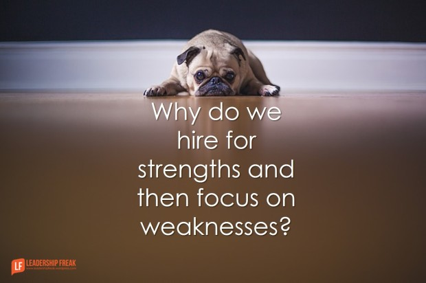 why-do-we-hire-for-strngths-and-then-focus-on-weaknesses