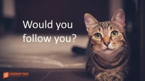 would-you-follow-you