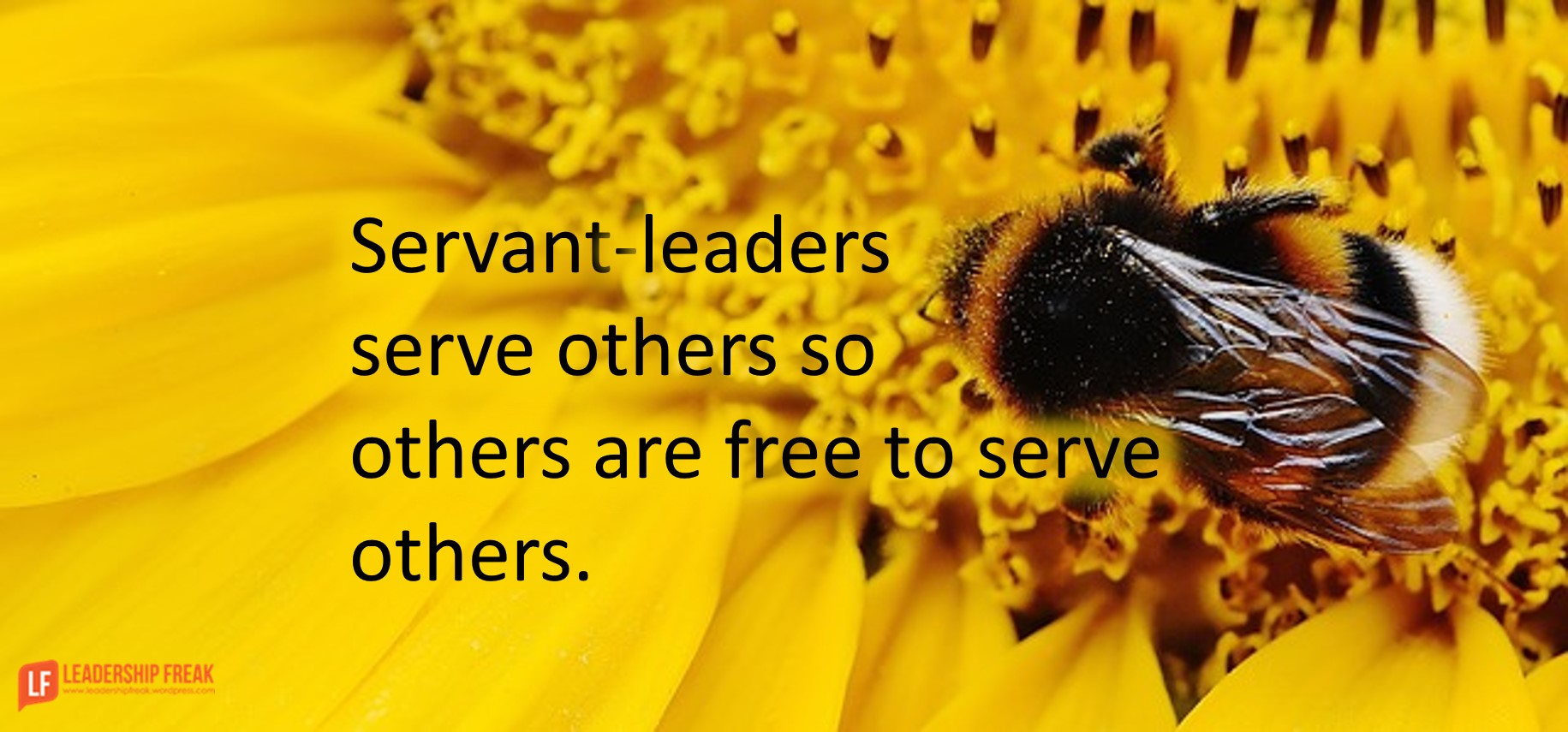 ways servant leaders serve others so others are to serve servant leaders serve others so others are