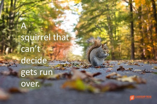 a-squirrel-that-cant-decide-gets-run-over