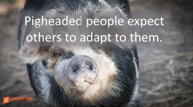 pigheaded people expect you to adapt to them