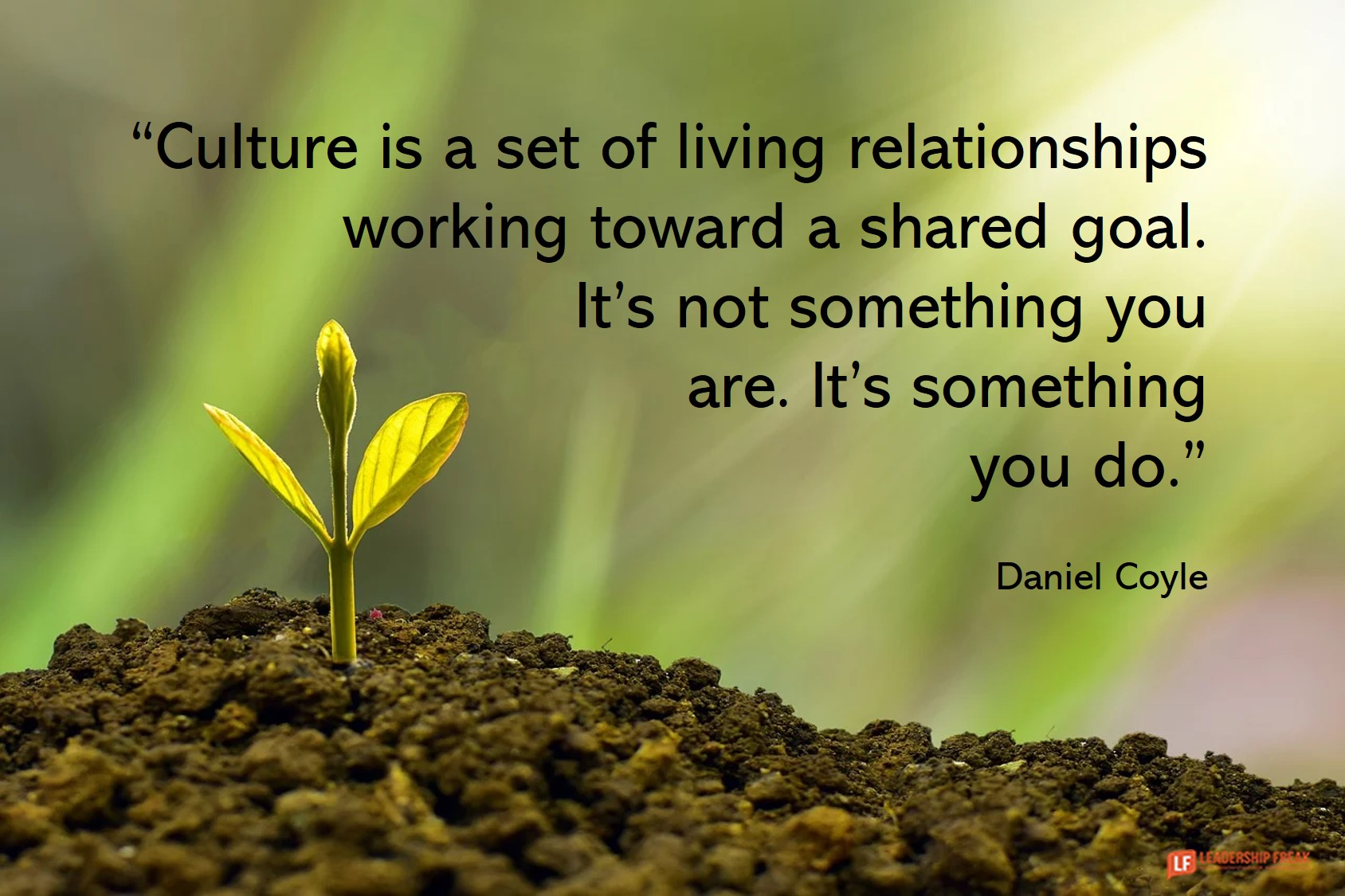 culture is a set of living relationships working toward a shared goal - It's not something you are - It's something you do