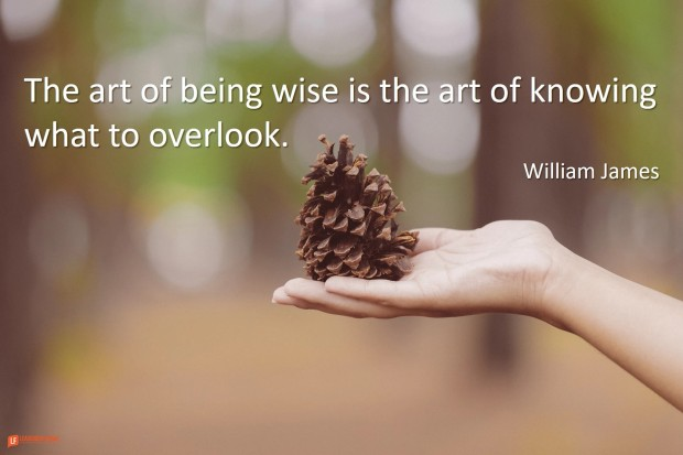 the art of being wise is the art of know what to overlook