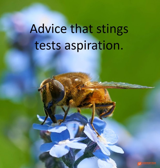 advice that stings tests aspiration 2