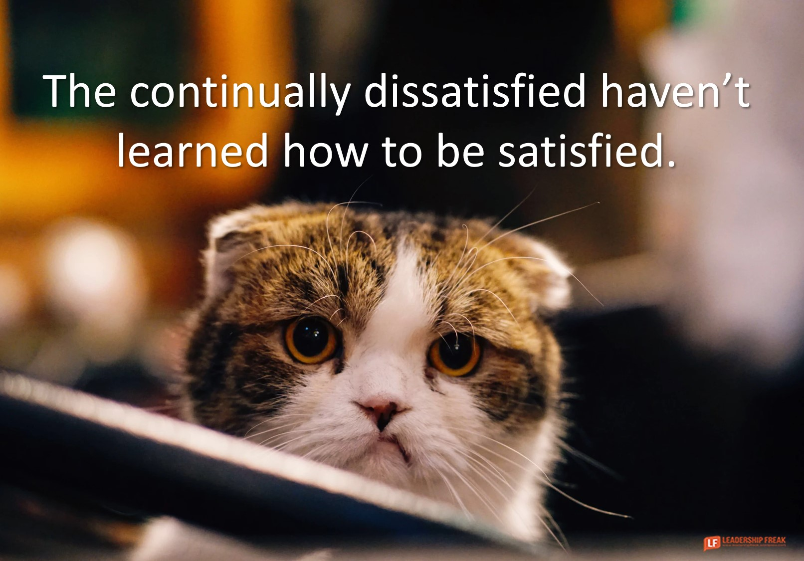 Making the Most of Dissatisfaction