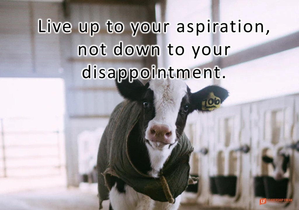 Calf  Live up to your aspiration, not down to your disappointment.