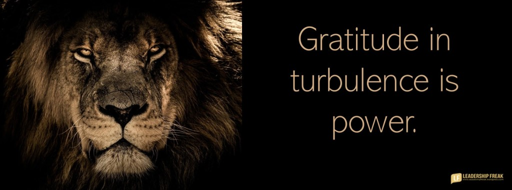 Lion.  Gratitude in turbulence is power.