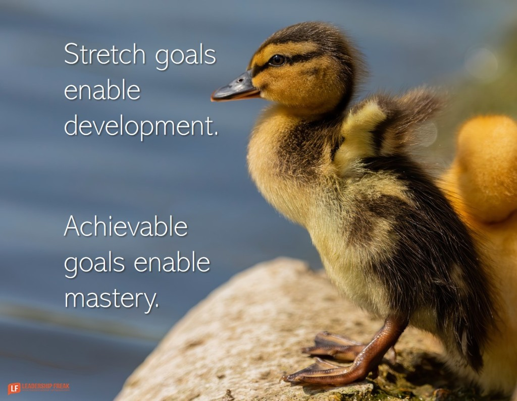 Duckling stretches it wings.  Stretch goals enable development. Achievable goals enable mastery.
