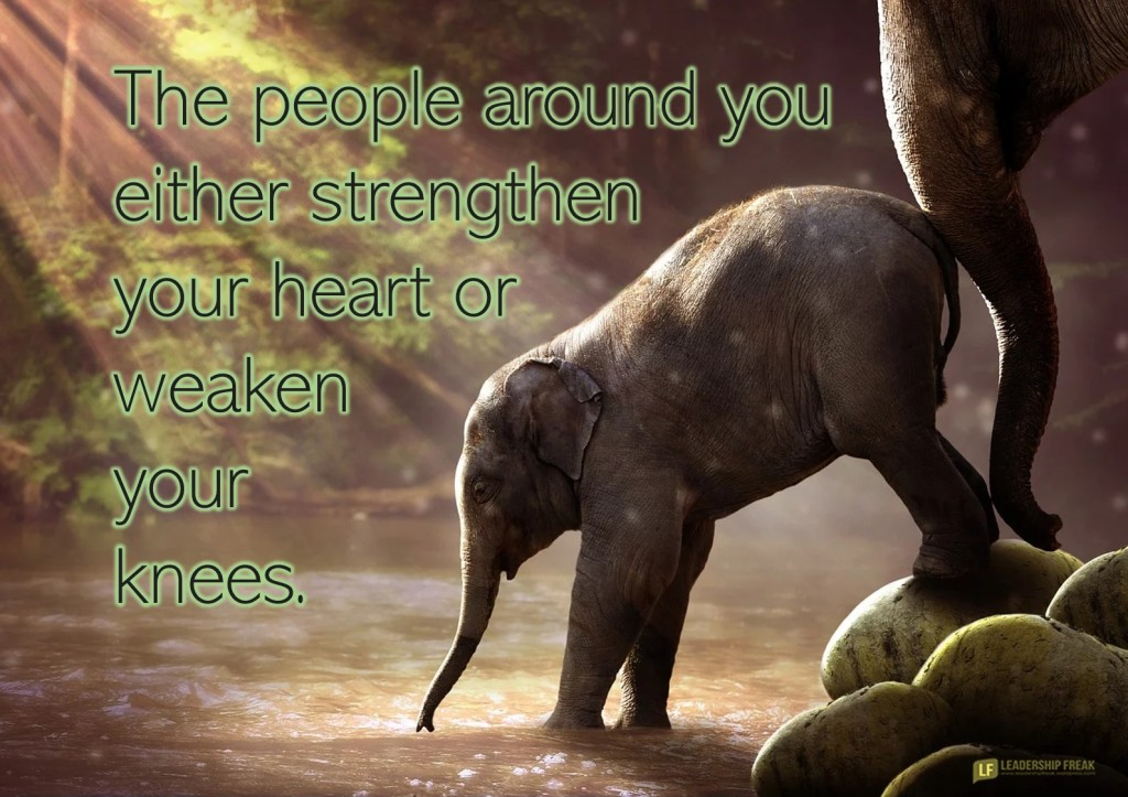 Mother and infant elephants.  The people around you either strengthen your heart or weaken your knees.