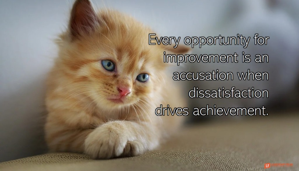 Sad cat.  Every opportunity for improvement is an accusation when dissatisfaction drives achievement.