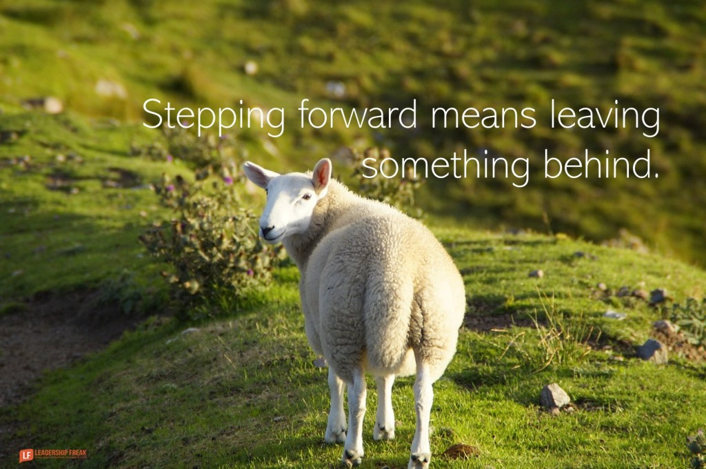 Lamb looking back  Stepping forward means leaving something behind.