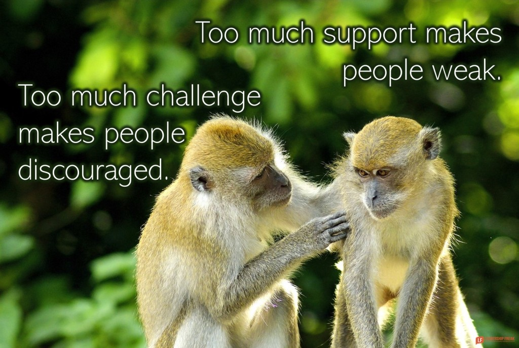 Monkeys  Too much support makes people weak. Too much challenge makes people discouraged.