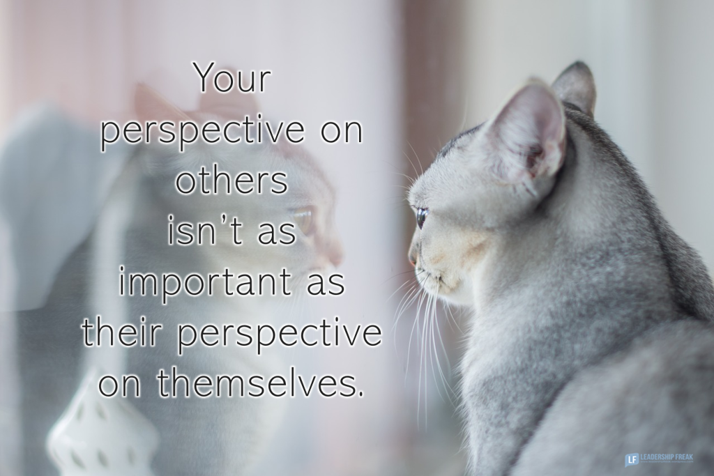 Cat's reflection  Your perspective on others isn't as important as their perspective on themselves.