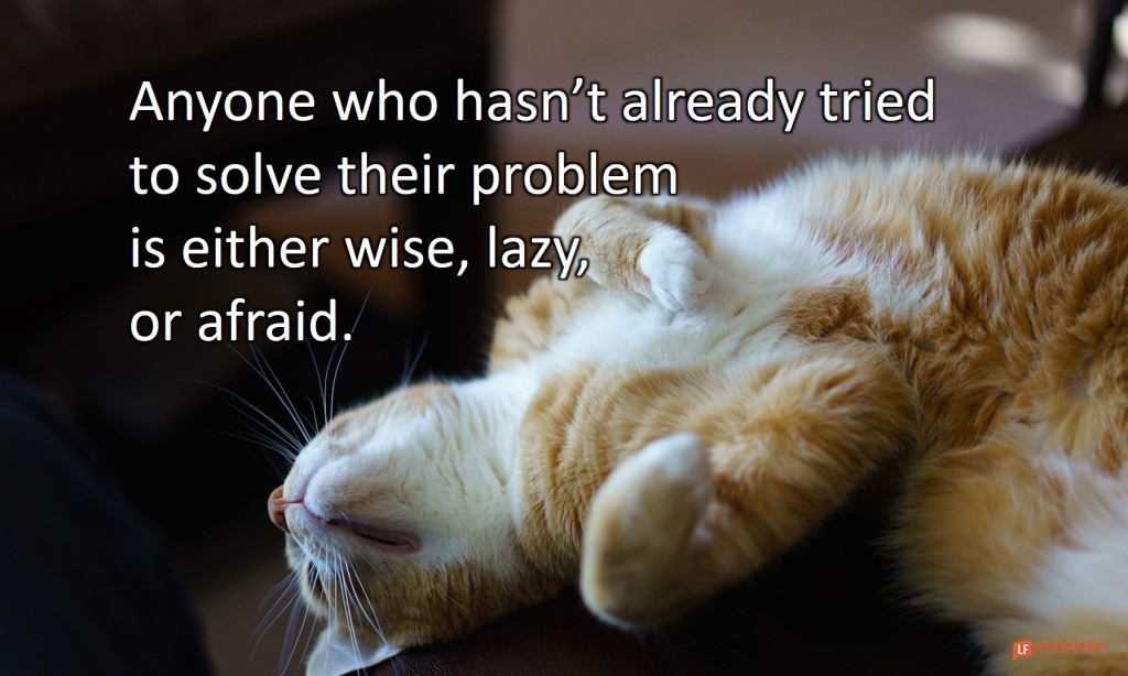 Lazy cat.  Anyone who hasn't already tried to solve their problem is either wise, lazy, or afraid.